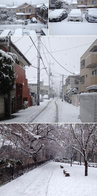 雪に覆われる東京